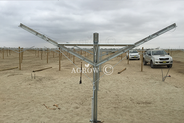 Galvanized Vineyard Steel Trellis Structure-AGROW.jpg